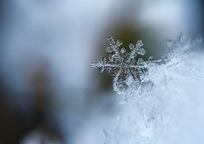Category_snowflake_1245748_960_720