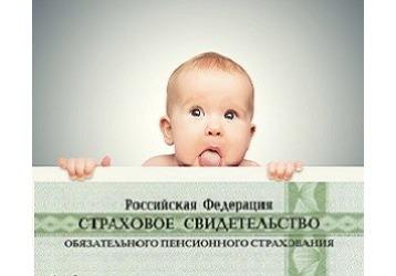 Как и где получить СНИЛС в Краснодаре, фото — «Реклама Краснодара»