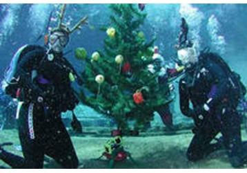 Новый год под водой, фото — «Реклама Севастополя»