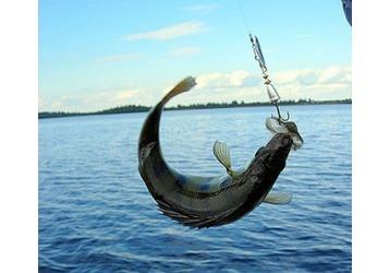 Где можно ловить рыбу в Керчи, фото — «Реклама Керчи»