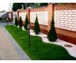 Благоустройство территорий, тротуарная плитка, асфальт, ландшафтный дизайн, озеленение., фото — «Реклама Севастополя»