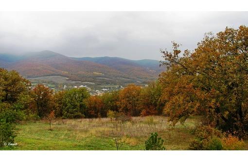 Прекрасный участок возле леса в с. Гончарное, фото — «Реклама Севастополя»
