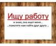 Ищу подработку или основную работу., фото — «Реклама Севастополя»