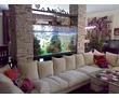 Изготовление,обслуживание (чистка) аквариумов в Крыму и Севастополе, фото — «Реклама Севастополя»