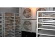 Холодильные камеры для хранения и заморозки  рыбы, фото — «Реклама Симферополя»