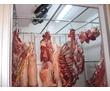 Холодильные камеры охлаждения и хранения мяса, фото — «Реклама Симферополя»