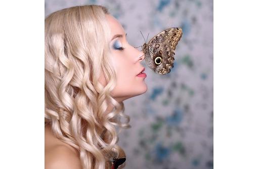 Салют из живых тропических бабочек - уникальный подарок, доступный каждому!, фото — «Реклама Симферополя»
