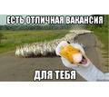 Thumb_big_gusi_63314413_orig_