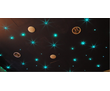 Звездное небо на потолке комплект 200шт, фото — «Реклама Симферополя»