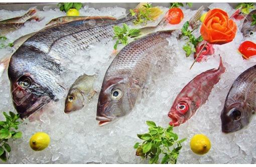 Свежемороженая рыба в Крыму - цены ниже рыночных!, фото — «Реклама Севастополя»
