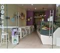 Диваны, кровати, столы из поддонов/паллет и нового дерева - Мебель для гостиной в Симферополе