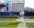Уничтожение бытовых насекомых и сельхозвредителей в Крыму, профессиональная дезинсекция, дератизация, фото — «Реклама Севастополя»