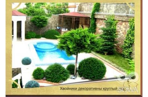 Консультации по ландшафтному дизайну. Проектировка участка. Севастополь. Крым., фото — «Реклама Севастополя»