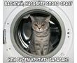 Ремонт Стиральных Машин, Бойлров, Газовых Котлов и Колонок., фото — «Реклама Севастополя»