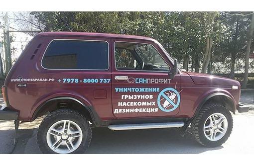 Профессиональное уничтожение бытовых насекомых и грызунов в Керчи, фото — «Реклама Керчи»