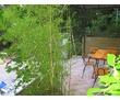 Комфортабельный коттедж в Мисхорском парке., фото — «Реклама Ялты»