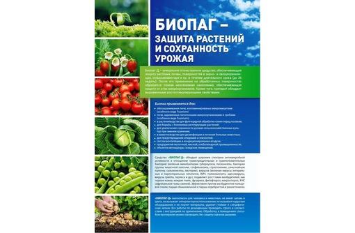 Биопаг - дезинфекция воды и помощь растениям без запаха., фото — «Реклама Симферополя»