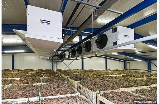 Овощехранилище.Оборудование для хранения моркови и капусты., фото — «Реклама Джанкоя»