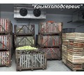 Холодильные Камеры для Хранения Овощей, Картофеля, Лука, Капусты. - Продажа в Старом Крыму