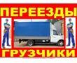 ГРУЗОВЫЕ перевозки  УСЛУГИ ГРУЗЧИКОВ, фото — «Реклама Севастополя»