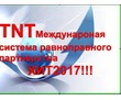 Бизнес в системе равноправного партнёрства компании ТНТ,новый маркетинг!, фото — «Реклама Севастополя»