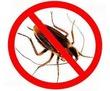 Дезинсекция вентиляционных систем, кондиционеров. Полное выведение насекомых., фото — «Реклама Севастополя»