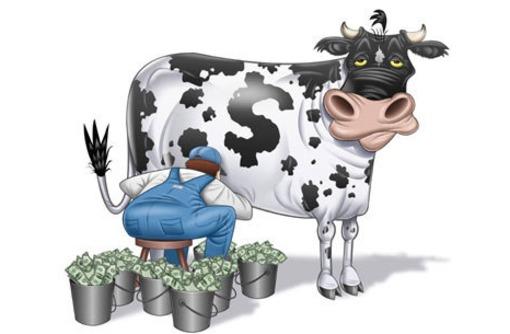 Бизнес-план для фермеров. Разработка, подготовка к получению грантов, инвестиций, кредитов., фото — «Реклама Симферополя»