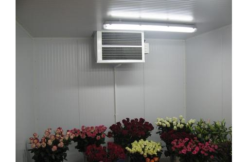 Холодильная камера для цветов.Доставка,монтаж,гарантия., фото — «Реклама Севастополя»