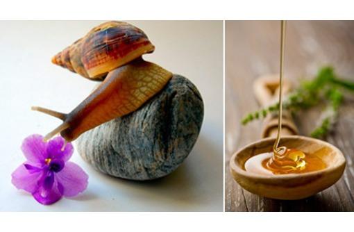 Улиткотерапия(массаж улитка), фото — «Реклама Севастополя»