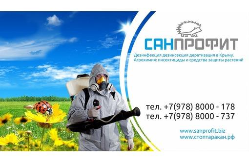 Дезинсекция в Евпатории, профессиональная борьба с насекомыми, тараканами, блохами, клопами и тд, фото — «Реклама Евпатории»