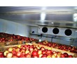 Холодильное оборудование для овощехранилища.Установка,гарантия., фото — «Реклама Бахчисарая»