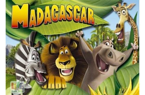 Детские игровые комнаты «Мадагаскар» - утренники, праздники, отдых в будни и выходные!, фото — «Реклама Севастополя»