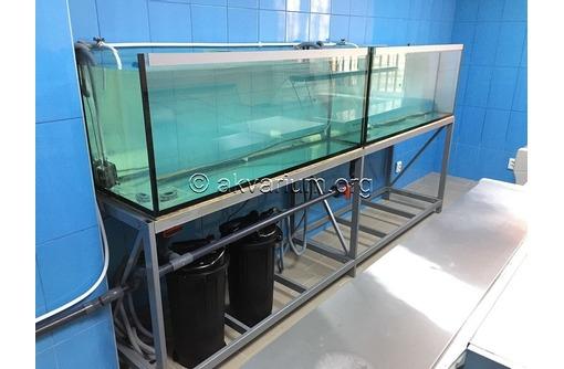 Изготовление аквариумов для торговли живой рыбой и раками в Крыму и Севастополе, фото — «Реклама Севастополя»
