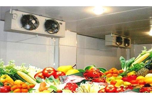 Оборудование для холодильных камер хранения пищевых продуктов., фото — «Реклама Севастополя»