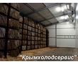 Холодильные Камеры для Моркови Капусты Лука, фото — «Реклама Джанкоя»