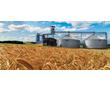 Уничтожение вредоносных насекомых и клещей в зерновой массе и при пересыпании, фумигация фосфином, фото — «Реклама Красноперекопска»