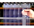 Ленточные шторы ПВХ (завесы,термошторы)., фото — «Реклама Черноморского»