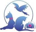 Ветеринарный врач на дом. - Ветеринарные услуги в Севастополе