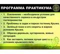 Озеленение в гостиницах и санаториях Крыма - практикум - Бизнес и деловые услуги в Симферополе