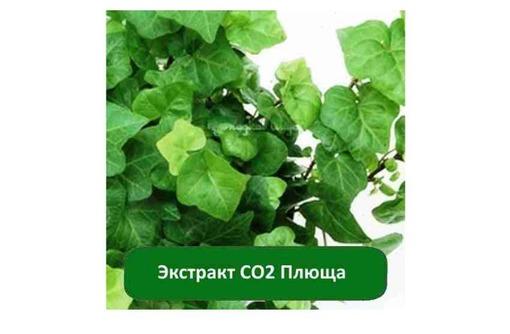 Купить Экстракт СО2 Плюща, фото — «Реклама Джанкоя»