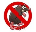 Истребление крыс и мышей! Быстрый и долговременный эффект! Звоните! - Клининговые услуги в Симферополе