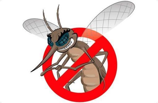 Обработка от комаров, клещей и других насекомых, а так же истребление грызунов! Эффект 100%!, фото — «Реклама Алупки»