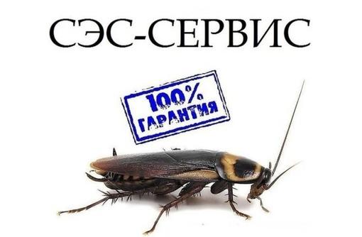 Истребление комаров, клещей, тараканов, клопов и других насекомых, а так же грызунов! Эффект 100%!, фото — «Реклама Приморского»