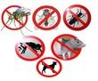 Истребление грызунов и насекомых! Борьба с плесенью, грибком и другими микроорганизмами. Эффект 100%, фото — «Реклама Севастополя»