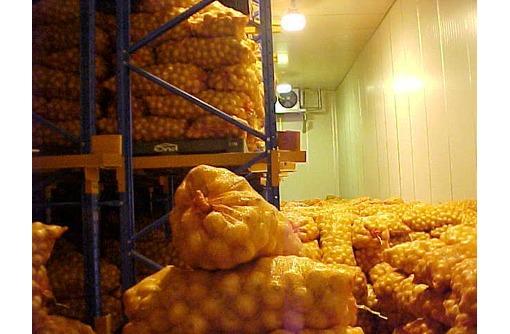 Холодильная камера для лука в Крыму. Проектирование, сборка, монтаж холодильного оборудования, фото — «Реклама Красногвардейского»