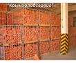 Холодильный Склад для Овощей и Фруктов. Установка с Гарантией, фото — «Реклама Красногвардейского»