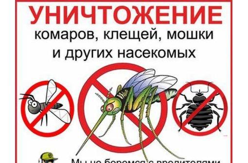Уничтожение комаров. Профессиональная борьба с комарами.Необходимый пакет документов. Гарантия., фото — «Реклама Севастополя»