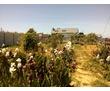 """Продам дом  СТ """"Мираж» в Вязовой Роще (Любимовка)., фото — «Реклама Севастополя»"""