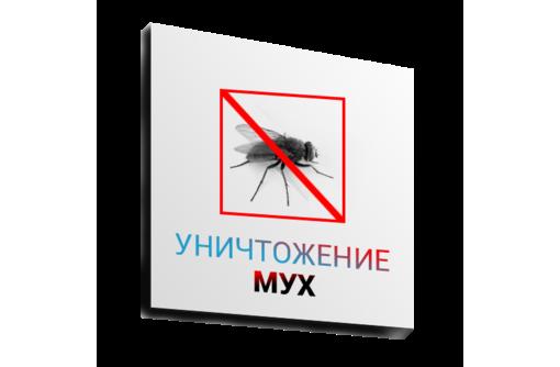 Обработка помещений от мух, одновременно с уничтожением всех насекомых сразу! Гарантия 100%!, фото — «Реклама Алушты»