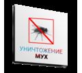 Обработка помещений от мух, одновременно с уничтожением всех насекомых сразу! Гарантия 100%! - Клининговые услуги в Алуште